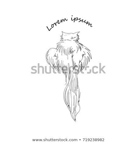 lion on nature hand drawing silhouette isolated on a white backg stock photo © nikodzhi