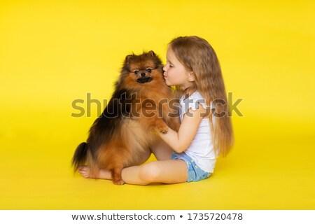 menina · cão · belo · jovem · vestir - foto stock © arturkurjan