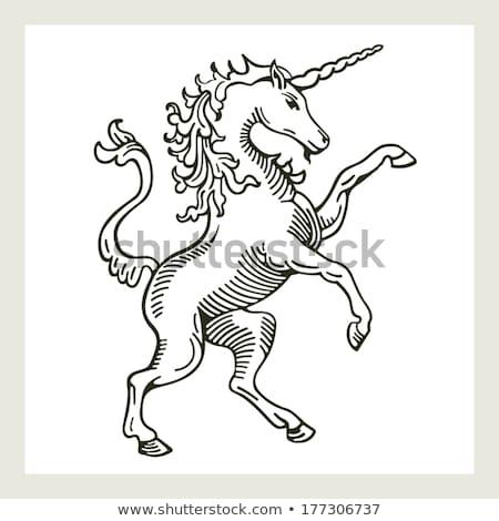 Heraldic Unicorn Rampant Crest Coat of Arms Stock photo © Krisdog