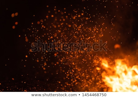 big firewood burns closeup stock photo © romvo