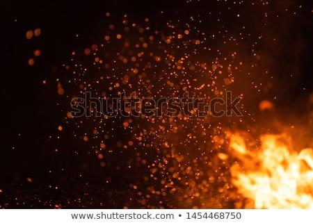 ビッグ 薪 クローズアップ 熱 バーベキュー 明るい ストックフォト © romvo