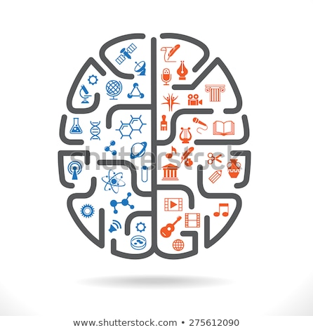 Abstract human brain with the icons of art and science. The concept of work left and right sides of  Stock photo © kyryloff