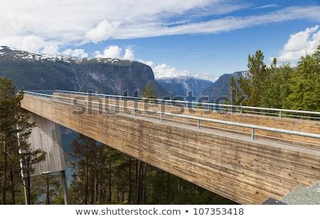 Stegastein viewpoint in Norway Stock photo © Kotenko