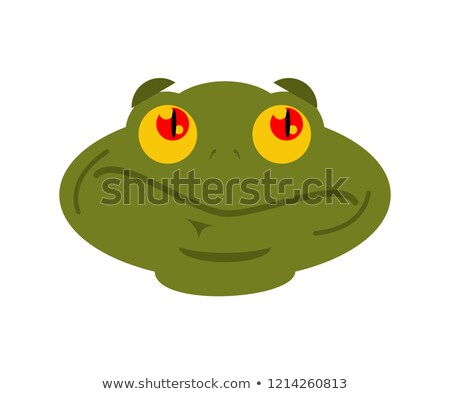 Frog surprised emoji. toad Avatar astonished amphibious. Emotion Stock photo © popaukropa