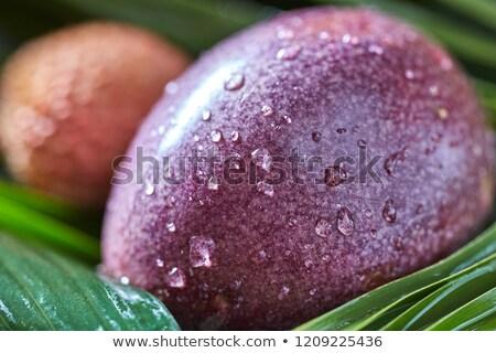 Közelkép szenvedély gyümölcs vízcseppek trópusi pálmalevelek Stock fotó © artjazz