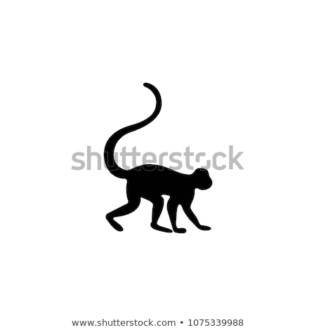 面白い 猿 ベクトル アイコン デザイン 抽象的な ストックフォト © blaskorizov