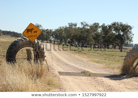 Drought stricken outback NSW Australia Stock photo © lovleah