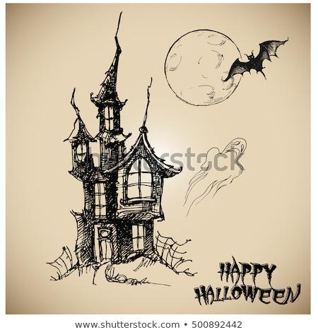mutlu · halloween · hayalet · bat · ikon · kedi - stok fotoğraf © netkov1