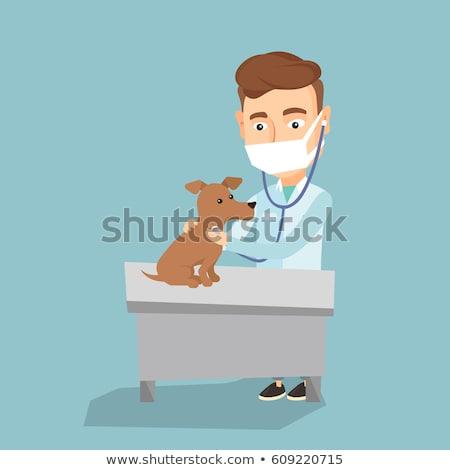 Arts onderzoeken hond artsen hand Stockfoto © Kzenon