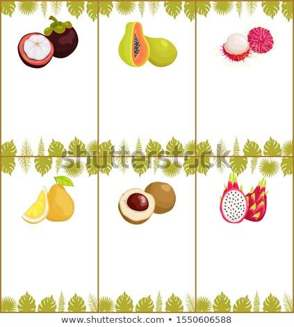 マンゴスチン ポスター 熱帯 セット エキゾチック 果物 ストックフォト © robuart