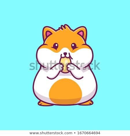 vector · clip · art · cute · hamster · achtergrond - stockfoto © izakowski