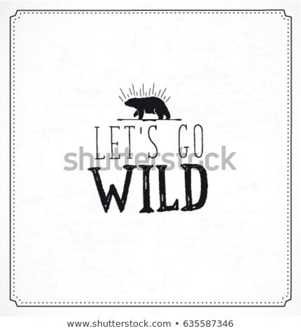 Background design with words let's go camping Stock photo © colematt