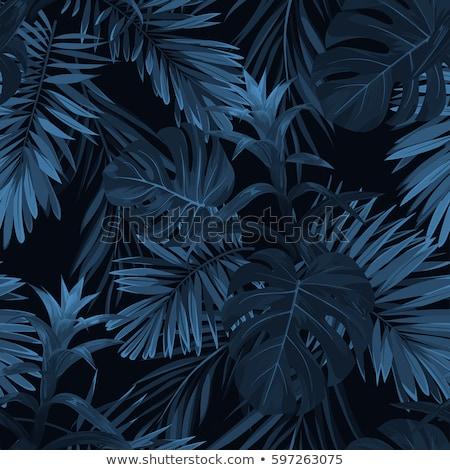 бесшовный цветочный шаблон черный цветы синий Сток-фото © Ecelop