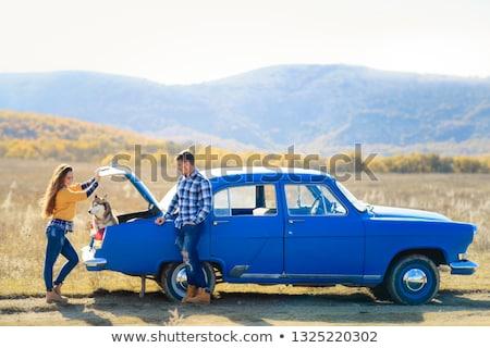 mulher · cão · carro · verão · viajar · férias - foto stock © elenabatkova