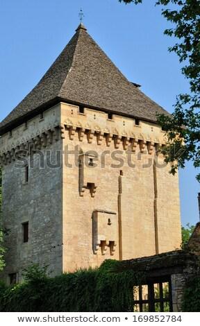Chateau de Clerans, Saint-Leon-sur-Vezere, France Stock photo © borisb17