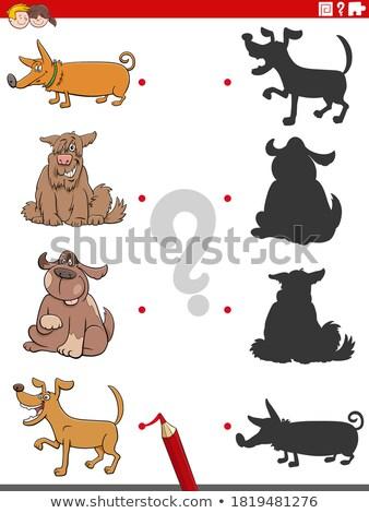 Тени задача собаки щенки Cartoon Сток-фото © izakowski