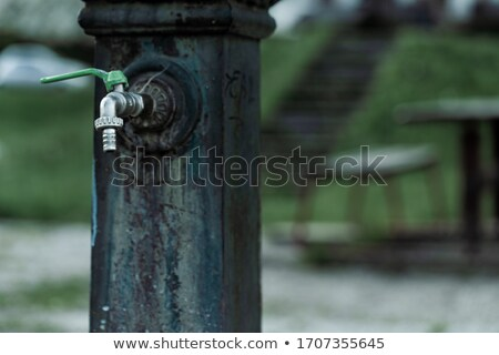 Old cast iron drinking fountain in a deserted park Stock photo © Giulio_Fornasar