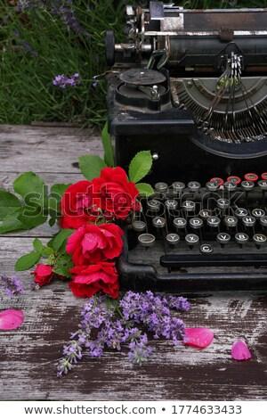 Rood rose toetsenbord oude typen machine business Stockfoto © inaquim