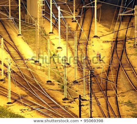 Train Tracks In Hongkong By Night Foto d'archivio © cozyta