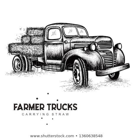 Vintage Farm Trucks Stock photo © pictureguy