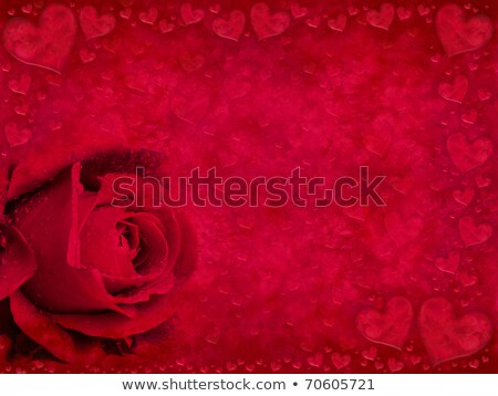 background of love, heart and red rosebuds Stock photo © marimorena