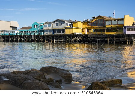 Wooden Pier and Coast in Monterey California Stock photo © pixelsnap
