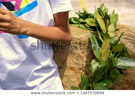 Olympics hands colours laurel wreath Stock photo © cienpies