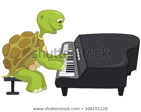 Vicces teknős zongorista rajzfilmfigura izolált fehér Stock fotó © RAStudio