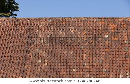 Velho telhado azulejos musgo céu casa Foto stock © samsem