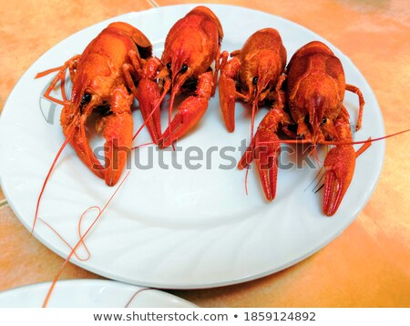 Stock photo: lobster lemon   shallow dof