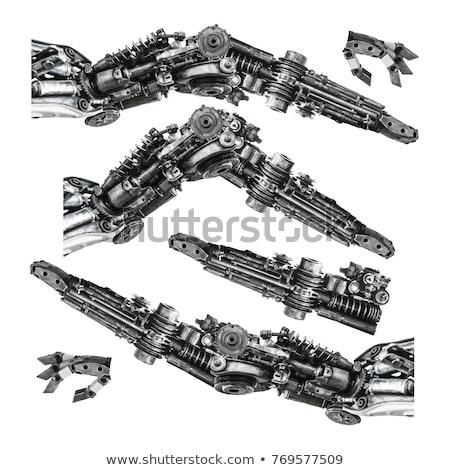 Cromo robô 3d render feminino tecnologia ciência Foto stock © AlienCat