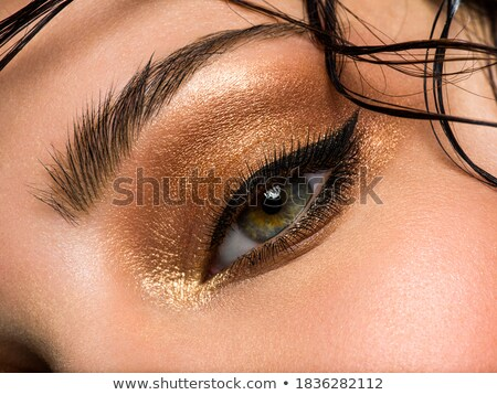Blue Eye Shadows. Mascara. Woman with Modern Bright Colorful Makeup. Face Art Stock photo © gromovataya