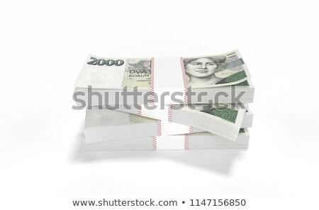coin bank and czech money Stock photo © jonnysek