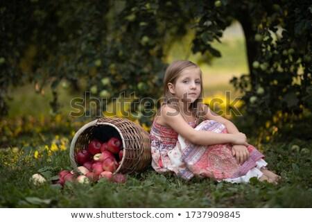 rode · appel · huid · textuur · waterdruppels · natuur - stockfoto © taden