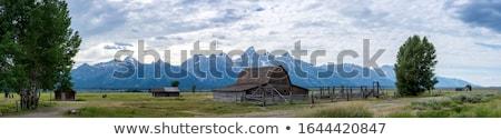Ikonikus farm Wyoming USA erdő természet Stock fotó © CaptureLight