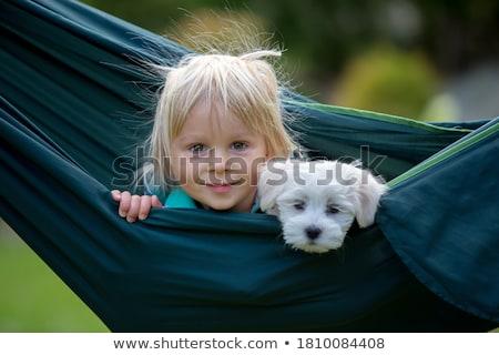 ребенка Swing саду девочку красивой лет Сток-фото © Kzenon