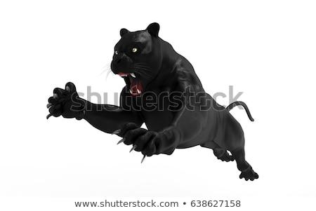 Saltar negro pantera mascota identidad emblema Foto stock © HunterX