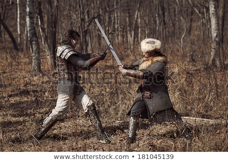 Eski akıllı kavga silah Metal kılıç Stok fotoğraf © sibrikov