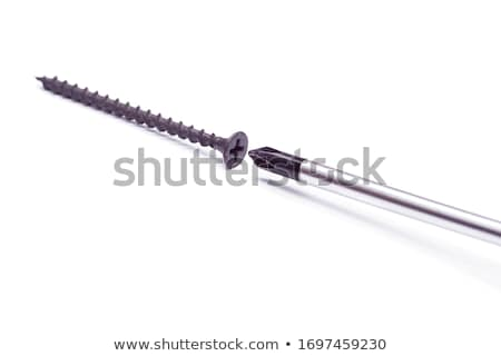 Phillips screw and screwdriver Stock photo © orensila