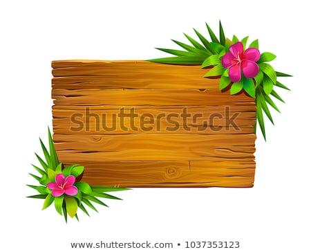 Vektor · willkommen · Holz · Zeichen · weiß · Design - stock foto © adamson