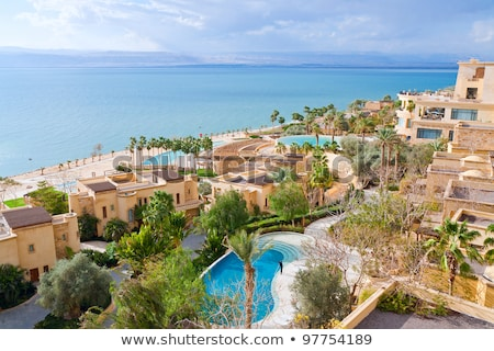 waterscape Dead Sea in Israel Stock photo © OleksandrO