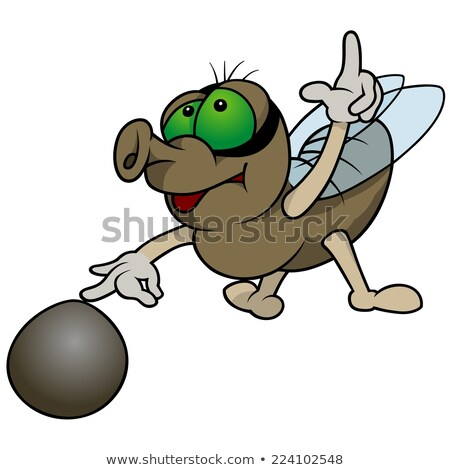 Fly Playing Marbles Stock photo © derocz