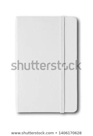 notebook · groene · elastisch · band · spiraal · vector - stockfoto © iunewind