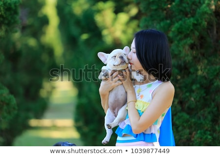 Woman holding small dog Stock photo © HASLOO