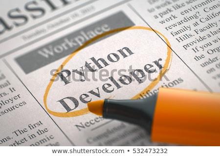 Promoteur python journal recherche d'emploi travaux Photo stock © tashatuvango