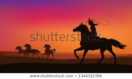 cowgirl at sunset stock photo © adrenalina