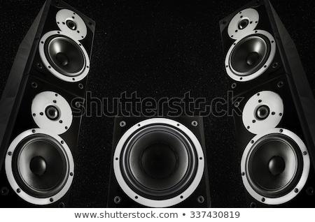 fekete · kettő · hangszóró · izolált · fehér · audio - stock fotó © ozaiachin
