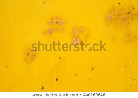 обои ржавые стали желтый краской аннотация Сток-фото © rekemp