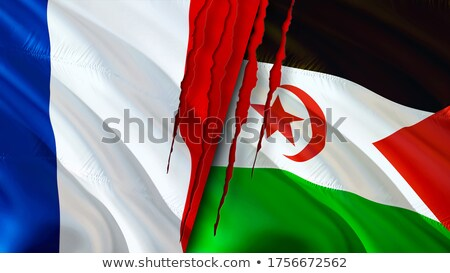France and Western Sahara Flags  Stock photo © Istanbul2009
