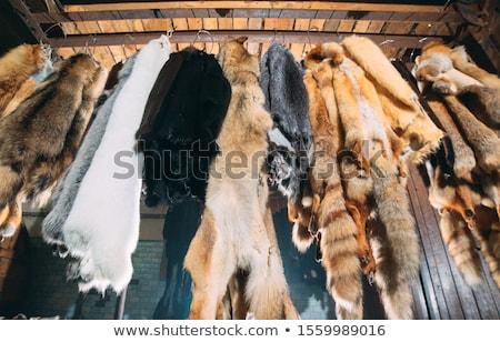 bourré · Fox · brun · isolé · blanche · visage - photo stock © artfotoss